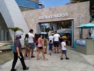 Acuario opera al 40% de su capacidad - El Sol De Mazatlán